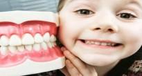 У ребенка выпал первый зуб — можно ли его сохранить?