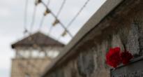 В Европе началась «последняя зачистка от нацистских преступников»