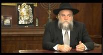 Новый проект Федерации еврейских общин России